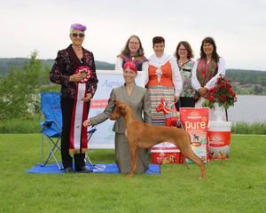 Best in Show bedömdes av Nina Karlsdotter och hon fann Faraohunden Vaskurs Gisela Harabo Qiwidotter som vackrast av dem alla, hunden är uppfödd och ägs av Jenny Hall från Torpsbruk.