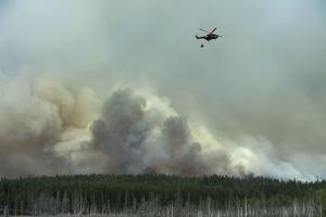 Skogsbranden 2014.