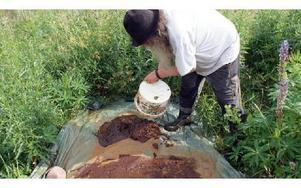 Därefter ska myrmalmen torkas. FOTO: ANGELICA LINDVALL