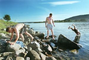 Yran 99: Jörgen Räfsbäck, Tobias Norlin och Ted Sjödin har besökt Yran 5 år i rad, men aldrig varit med om ett kallare vatten i Storsjön.