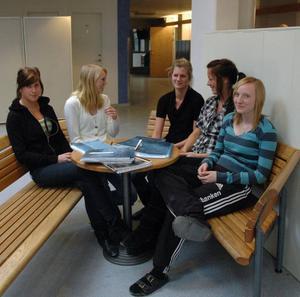 Positiva. Anna Sjöholm, Amanda Hoffman, Jonna Ruth, Linn Mases och Fredrika Eriksson går alla samhällsprogrammet årskurs 1. De vill gärna se betyg i sjugradig skala - det blir rättvisare tror de.