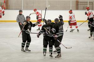 Sala Hockey har tre raka hemmasegrar i division 3. Foto: Niclas Bergwall