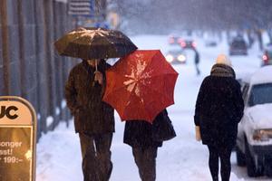 Det ymniga snövädret fick många att ta fram paraplyerna för skydd.