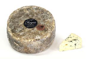Oviken osts grönmögelost Magna, som är gjord på opastöriserad komjölk belönades med en guldmedalj i World Cheese Awards.