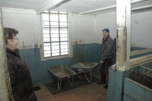 STALLET. Maria och Sylve Lindholm hade från början inga planer på att bygga om missionshuset till ett stall. Men i dag samsas fyra hästar om utrymmet.