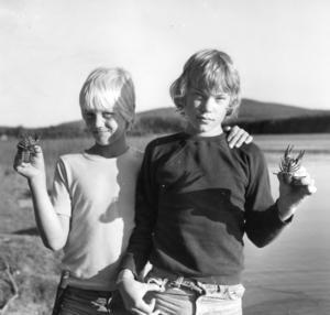 Ort: Bergsjö   Rubrik: Kräftpremiär! Välmatade kräftor i Nordanstigs vatten.   Bildtext: Här ses två stolta grabbar: Ove Strindlund och Martin Björklund som visar upp var sin kräfta.