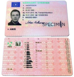De falska körkorten ser äkta ut, men bilderna är utbytta.