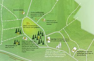 Skiss på förslaget till barnslinga i Varbergaskogen.