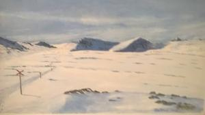 Från Frikos utställning på Stocke titt.