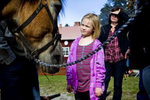 Sjuåriga Mathilda Lusth tog tillfället i akt och kikade på ardennerhästen Stjärn, 13 år.