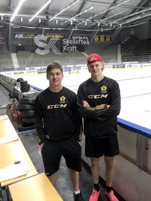 Andreas Zetterman, fostrad i HHC, och Albin Eriksson från Bollnäs IS, ska spela med Skellefteås J18-lag i vinter.