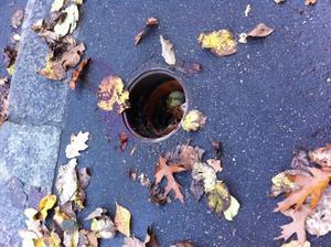 Det var i det här hålet som kvinnan trillade ner i.