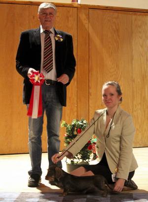 Emmelie Bäckmans strävhåriga tax Ronja Rövardotter blev Best in Show under helgens inofficiella hundutställning i Malung och prisades av domaren Nils Molin.