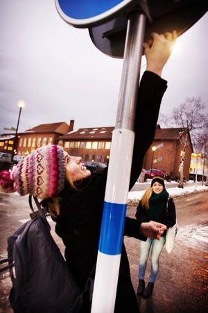 Elever från tredje året på Wargentinsskolans naturvetenskapliga program har mätt halten av kvävedioxider i luften på utvalda platser i Östersund, men stormen Ivar ser ut att ha spelat ett spratt i mätningarna.