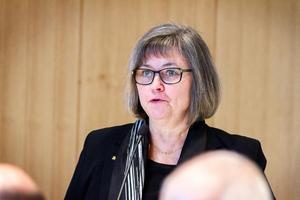 Moderaternas gruppledare Åsa Äng-Erikssons kommentar på Facebook var inte riktad mot Karl-Erik Wångstedt personligen.
