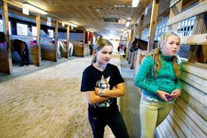 Linnea Lindroth och Hanna Engstöm tillbringar mycket tid på ridskolan i Ås tillsammans med hästarna och kompisarna.