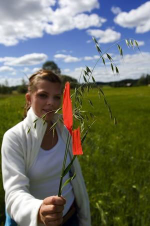 Så ser den ut. Lärlingen Lillemor Torstensdotter visar ett exemplar av flyghavre. Foto:Janne Eriksson