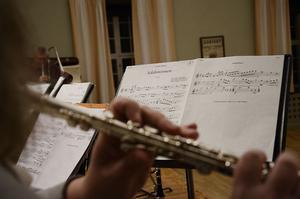 Orkestern spelar framförallt gammal musik. De har 307 arrangemang i sin repertoar i dag.