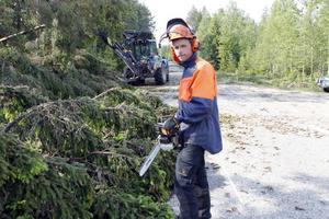 Lars Nordstrand från Hamra kapellags besparingsskog fick med motorsåg röja rent från skog längs väg 296 i Karlsberg. Här också assisterad av en traktorgrävare.