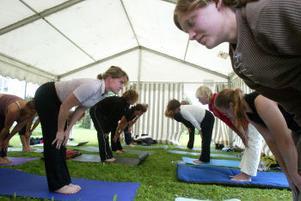 Yoga gör dig till en ödmjuk ryttare som inte stressar hästen eller dig själv med alla måsten.