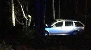 Bilen körde av Hammarleden i Surahammar och kolliderade med ett träd. Bild ur polisens förundersökning.