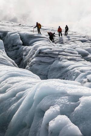 Glaciärsprickorna på Folgefonnaglaciären är mycket djupa.   Foto: Johan Öberg