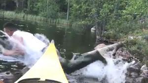 Moses kastar sig handlöst ut i sjön.