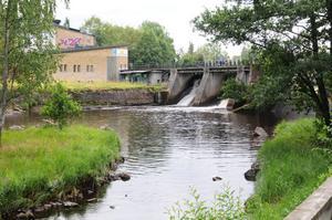Miljö- och jordbruksutskottets rapport och gårdagens utfrågning i riksdagen om vattenkraften kommer att ge rejäl skjuts åt arbetet för den biologiska mångfalden i våra vattendrag.