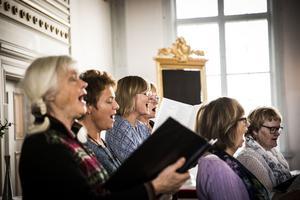 När de båda körerna samlas blir det 22 sångare som också ska framföra Otto Nicolais verk på söndag i Hammerdals kyrka. Under helgen berättade Anna Svensson, mitten i blått, vem Nicolai var för att kören skulle få  bakgrund till den i Sverige ganska okända kompositören.