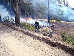 Räddningstjänsten fick hjälp av en väg som hejdade gräsbranden innan den hann sprida sig till skogen.