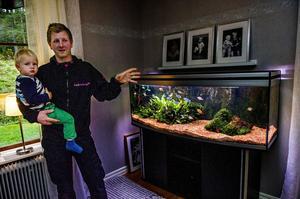 Henrik Schavons stora intresse är fiskar och akvarium. Och för honom är akvariet är vacker inredningsdetalj.