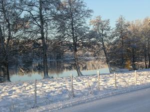 Första snön i Ålsätra har fallit. Ute på vår första promenaden i snö för denna vinter 2011/2012. Denna underbara vy fick jag och min hund Geri uppleva :)