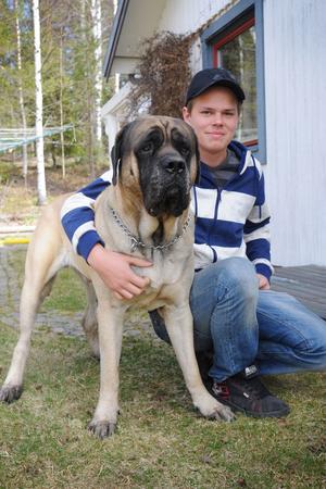 Emil valde OzzyNär Ozzy kom till familjen Näslund hette han Peter. Men den lille valpen från Rättvik fick snart ett nytt namn, Ozzy. Döpt efter rockstjärnan Ozzy Osbourne för liknelserna