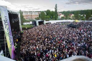 Tiotusentals människor besöker endagsfestivalen varje år.