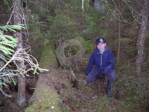 TRÄDSTAM. Det var med ett fotografi av den här trädstammen som Martin Eriksson vann Lyckoslantens fototävling. Nu besökte han den tillsammans med sin klass på Gullhedsskolan. .