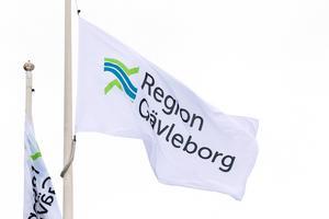 Region Gävleborg har åkt åtta gånger till Kalifornien och Kaiser Permanente sedan januari 2014.