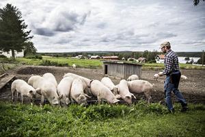 Per Jonsson och Leif Jonsson har ingen gårdsbutik i dagsläget, utan säljer sina produkter genom beställning och matbutiker.