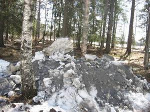 Först trodde jag att det var en vit jätte- groda som sattbakom högen. Sedan såg jag att det var ett mumintroll.
