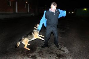 TRÄNING PÅGÅR. Det blir många timmars arbete för hundföraren Sune Åström. Här är det Kenneth Thörnqvists jacka med skydd som får smaka på Jarros grepp.