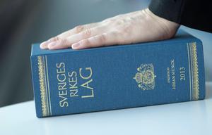 En man från Ludvika kommun döms till dagsböter för fyra brott begångna i hemkommunen under en och samma dag.