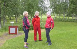 Britt Odén, längst till höger, fick ta hem vandringspriset för damer när hon vann Björnslaget för tredje gången i tisdags. Här är hon tillsammans med Ing-Marie Gustafsson och Margareta Bylund.