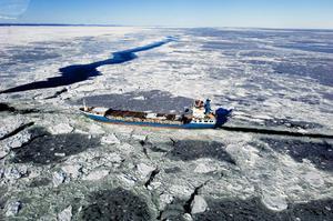 Blåst och kyla ställer till problem. Isvallar bildas som skeppen inte tar sig igenom. Nederländska Tanja frös fast omkring 20 sjömil utanför Storjungfrun.
