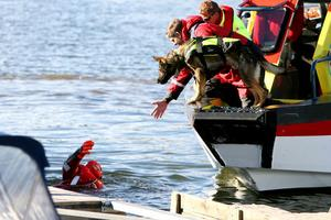 Varje år ingår två eller tre obligatoriska sjöräddningsövningar.