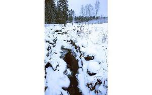 Det här är en av vattenlederna som förde till Falu gruva - nu är den synliggjord.Foto: Staffan Björklund