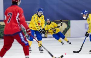 17 mål har Erik Pettersson mäktat med på sina två tidigare VM-turneringar, båda på rysk mark.