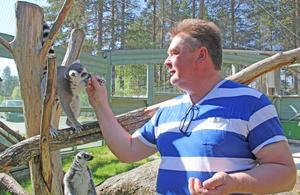 Ulf Henriksson med sina favoriter, lemurerna.