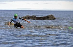 Team Triscore på väg neri vattnet för nästa simsträcka.