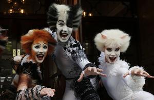Andrew Lloyd Webbers musikal Cats är en riktig klassiker.