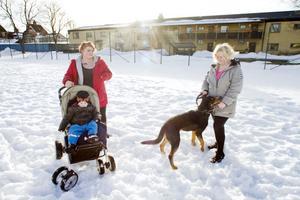 Rebecca Jönsson och Linda Eriksson oroas av den senaste tidens händelser i Sandviken. Här med Leon, 2 år, och hunden Hero.