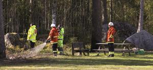 Gräsbranden kunde snabbt släckas av brandmännen.